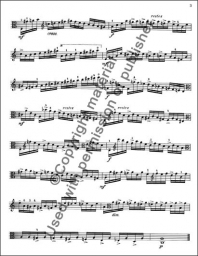 16 Fantasy Etudes for Viola